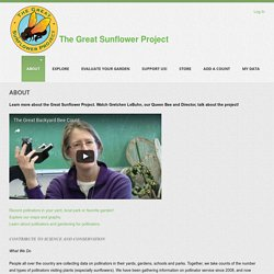 The Great Sunflower Project