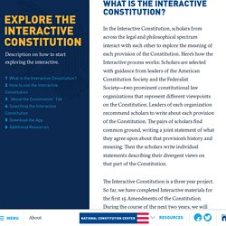 About the Interactive Constitution