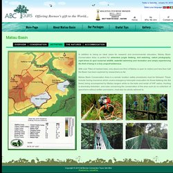 About Maliau Basin - ABC Tours