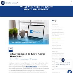 What You Need to Know About Microsoft SharePoint?