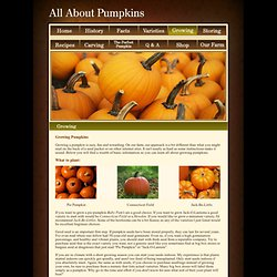 All About Pumpkins - Learn How to Grow Pumpkins - Basic Information