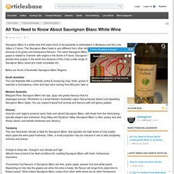 Facts About Sauvignon Blanc White Wine