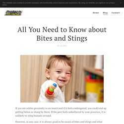 All You Need to Know about Bites and Stings