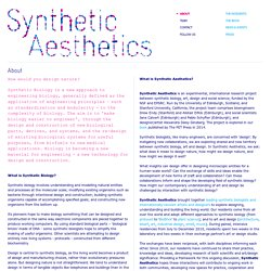 About - Synthetic Aesthetics