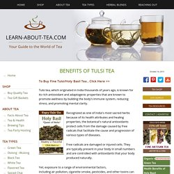 About Tulsi Tea (Holy Basil Tea) - Health and Healing