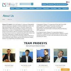 Pridesys IT Ltd