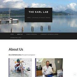 The Karl Lab