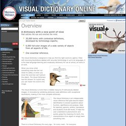 Webster's Visual Dictionary