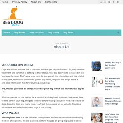 Best Dog Products Information in USA