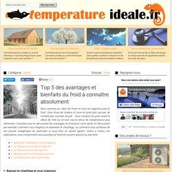 Top 5 des avantages et bienfaits du froid à connaître absolument - Température Idéale