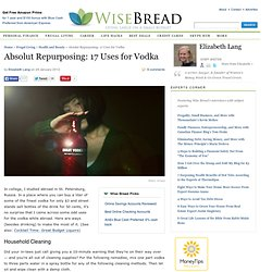 Absolut Repurposing: 17 Uses for Vodka