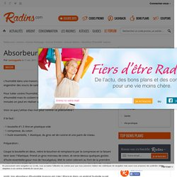 Absorbeur d'humidité 'maison' sur Radins.com