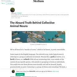 The Absurd Truth Behind Collective Animal Nouns – Naturalish