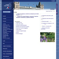 Anglais Orléans-Tours:Collège