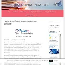 Synthèse académique Traam Documentation 2016-2017 – Documentation – Nancy – Metz