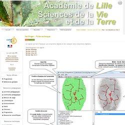 le site académique de SVT de Lille - Verifinger : Fiche technique