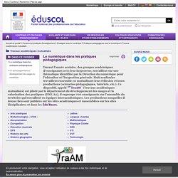 Travaux académiques mutualisés - Le numérique dans les pratiques pédagogiques