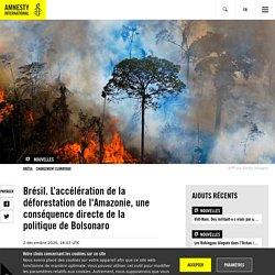 Brésil. L'accélération de la déforestation de l'Amazonie, une conséquence directe de la politique de Bolsonaro