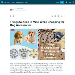 Things to Keep in Mind While Shopping for Dog Accessories