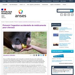 ANSES 16/03/21 Prévenir l'ingestion accidentelle de médicaments pour chevaux