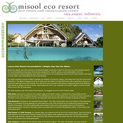 accommodation: misool eco resort, raja ampat, indonesia