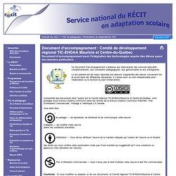 Document d'accompagnement : Comité de développement régional TIC-EHDAA Mauricie et Centre-du-Québec