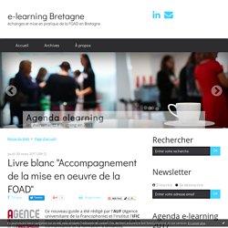 "Livre blanc ""Accompagnement de la mise en oeuvre de la FOAD"" - e-learning Bretagne"