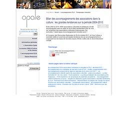 Accompagnement DLA et associations artistiques et culturelles: les grandes tendances sur la période 2004-2010.