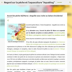 Accord de pêche UE/Maroc : Anguille sous roche au Sahara Occidental