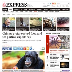 Chimps may prefer cooked food according to nature experts