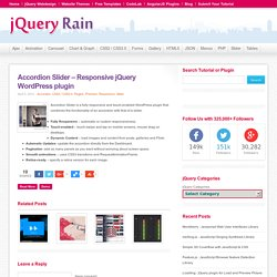 Accordion Slider - Responsive jQuery WordPress plugin
