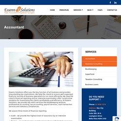 Accountant - Public Accountant