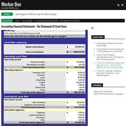 Accounting Financial Statements – The Statement of Cash Flows – Worker Bee