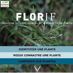 Florif détermination de plantes