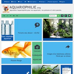Association Aquariophilie.org : Accueil