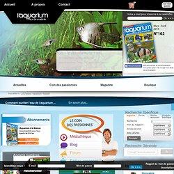 L'Aquarium à la maison, le magazine des passionnés d'aquariophilie et d'aquascaping