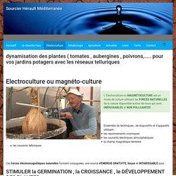 Accueil : Electroculture