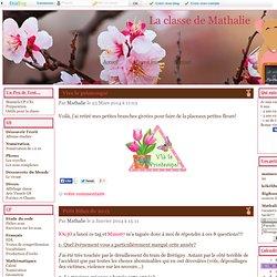 La classe de Mathalie CP-CE1