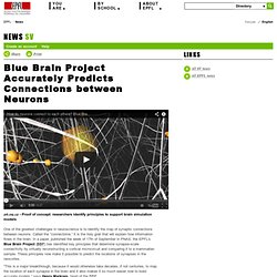 Blue Brain Project Accurately Predicts Connections between Neurons