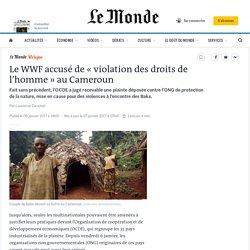 Le WWF accusé de «violation des droits de l'homme» au Cameroun