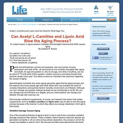 Can Acetyl L-Carnitine and Lipoic Acid Slow the Aging Process?