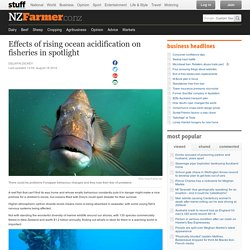 Effects of rising ocean acidification on fisheries