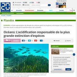 Océans: L'acidification responsable de la plus grande extinction d'espèces