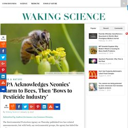 EPA Acknowledges Neonics' Harm to Bees, Then 'Bows to Pesticide Industry' - WAKING SCIENCE