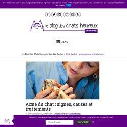 Acné du chat: signes, causes et traitements