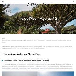 Ile de Pico - Açores #2 - La Valise à Fleurs, blog de voyage