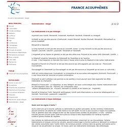 France acouphènes : automédication : danger