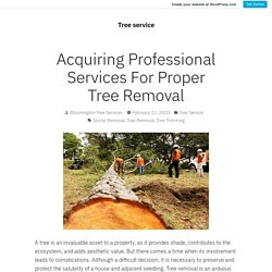 Acquiring Professional Services For Proper Tree Removal