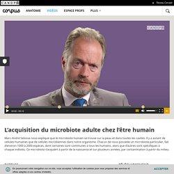 L'acquisition du microbiote adulte chez l'être humain - Corpus - réseau Canopé