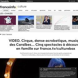 Cirque, danse acrobatique, musique des Caraïbes... Cinq spectacles à découvrir en famille sur france.tv/culturebox